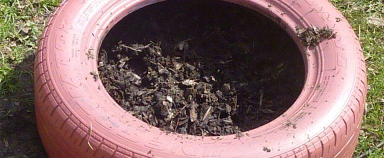 Organic Tires